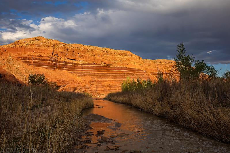 Muddy Creek Evening
