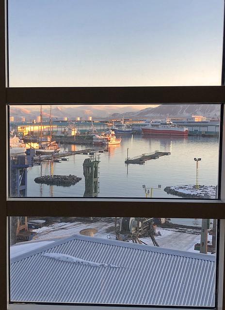 Reykjavik harbour in the morning sun, Iceland