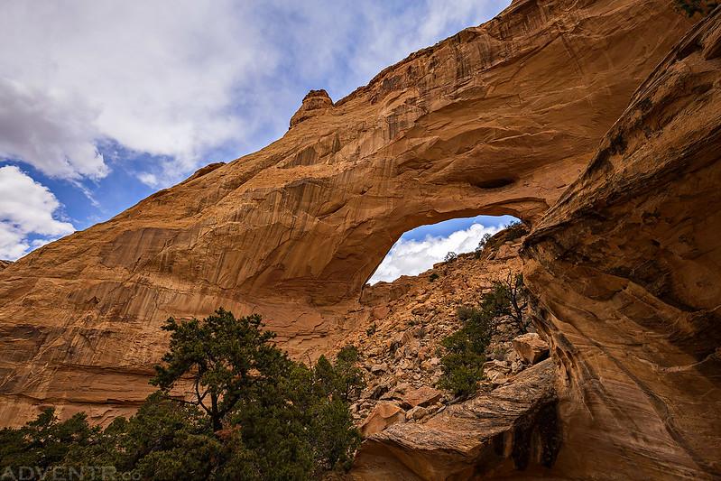 Slipper Arch