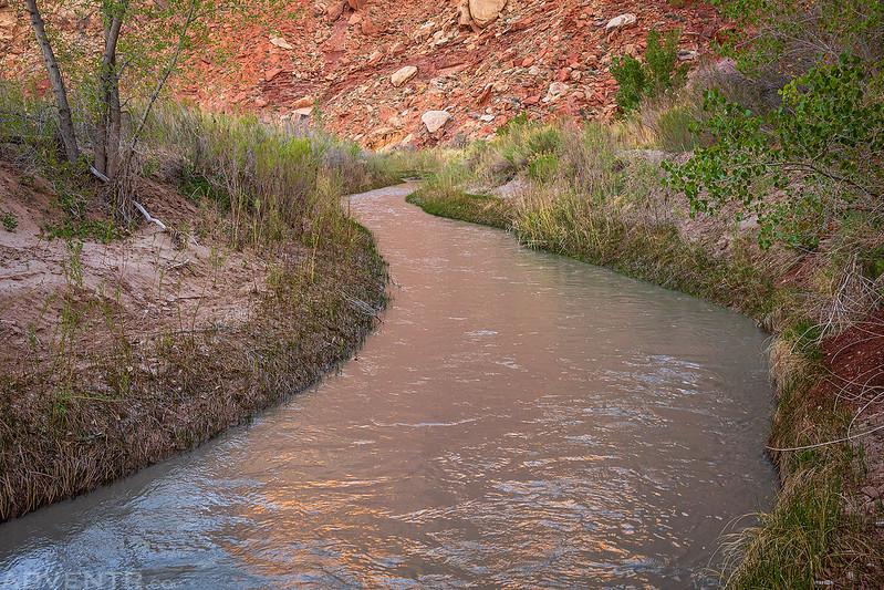 Walking Along Muddy Creek
