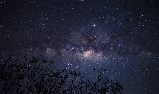 Remarkable moment of milky way galaxy and thousands of stars in the night sky above the trees. Shot while camping in Sumbawa