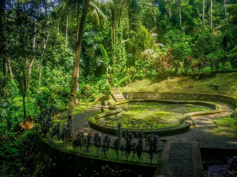 Les jardins de Goa Gajah... 49850847098_8ac0018789_c