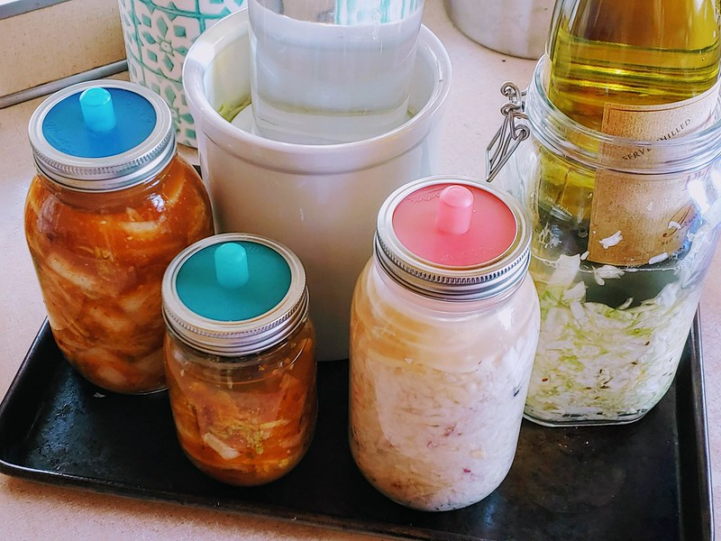 Sauerkraut, Sauerruben, and kimchi fermenting.