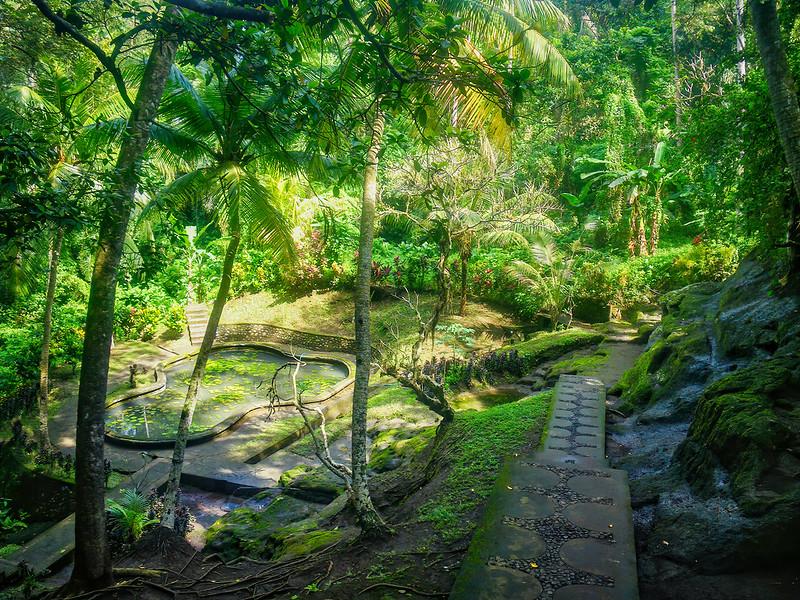 Les jardins de Goa Gajah... 49851373541_d72948c452_c