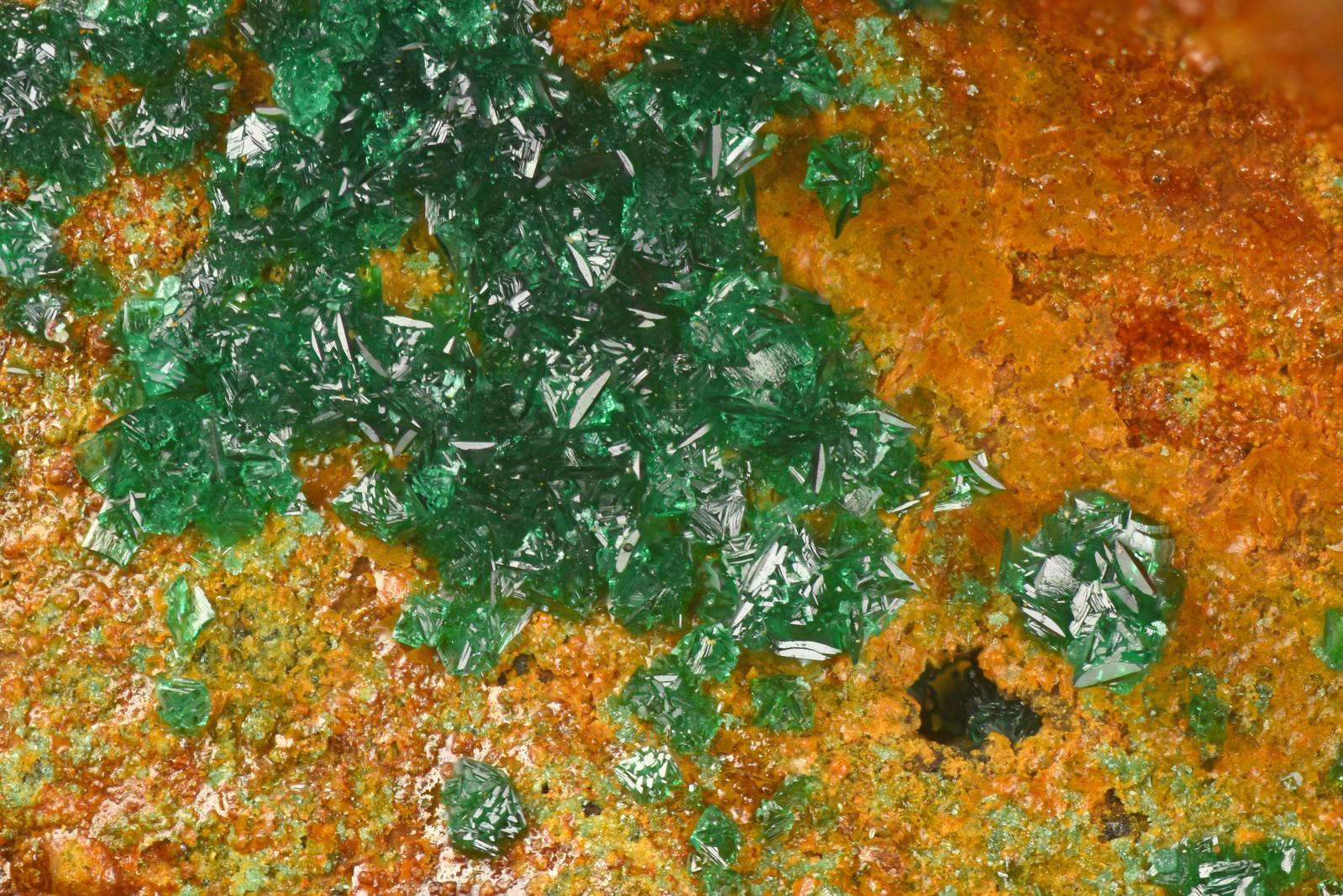単斜アタカマ石 / Clinoatacamite