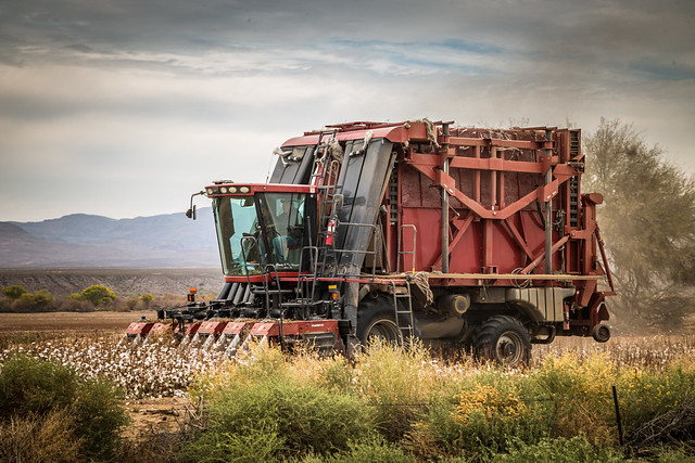 Case Cotton Harvester - Explored