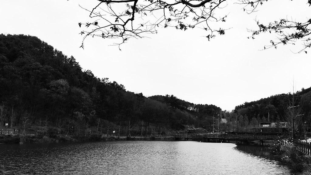 Winter lake in Jochiwon