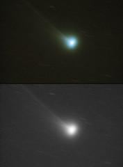 Comet C/2020 F8 (SWAN) over Sydney