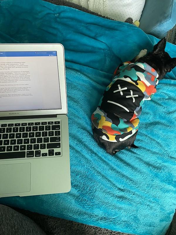 Pandemic writing