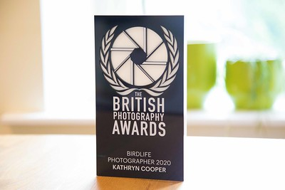 British Photography Awards 2020