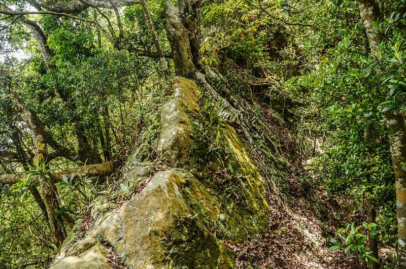 和興山(吊石山)岩稜地形 (2)
