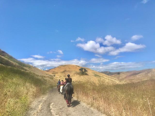 Trail gang 2019