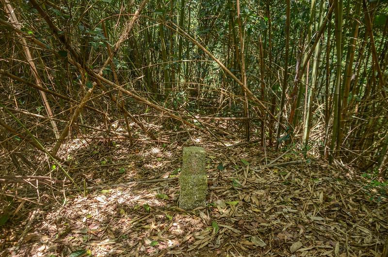 老雞山(油房坑山、硫磺坑山)冠字山(25)土地調查局圖根點(Elev. 261 m)