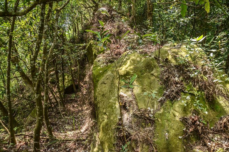 山羊凸山峭壁岩稜地形 (1)