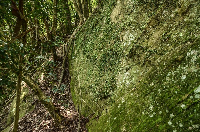 山羊凸山山頂下巨岩地形 (3)