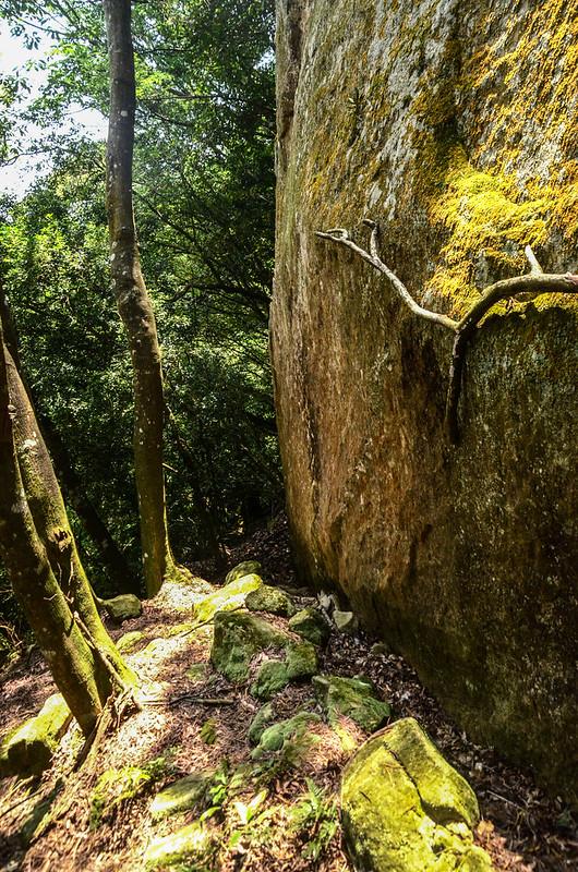 山羊凸山山頂下巨岩地形 (2)