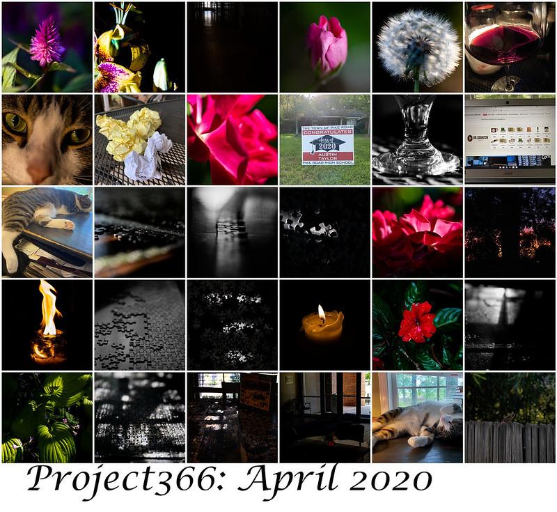 Project366 April