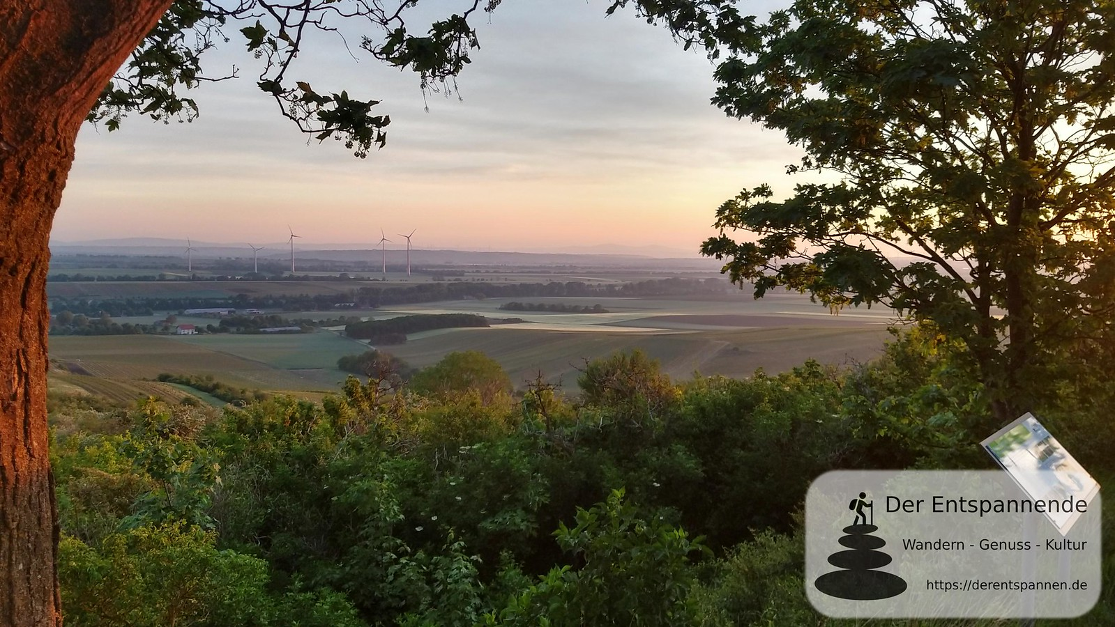 Blick über Selztal bis Taunus vom Petersberg (Rheinhessen)