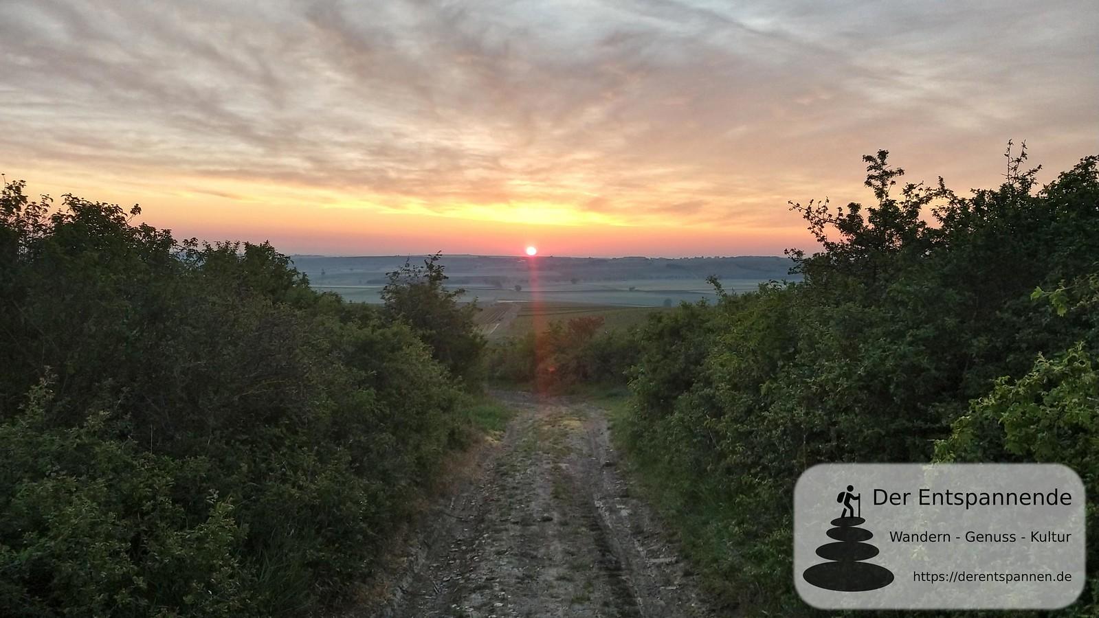 Sonnenaufgang auf dem Petersberg (Rheinhessen)