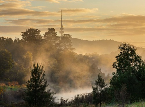 Mist on the Molonglo | by Rod Burgess