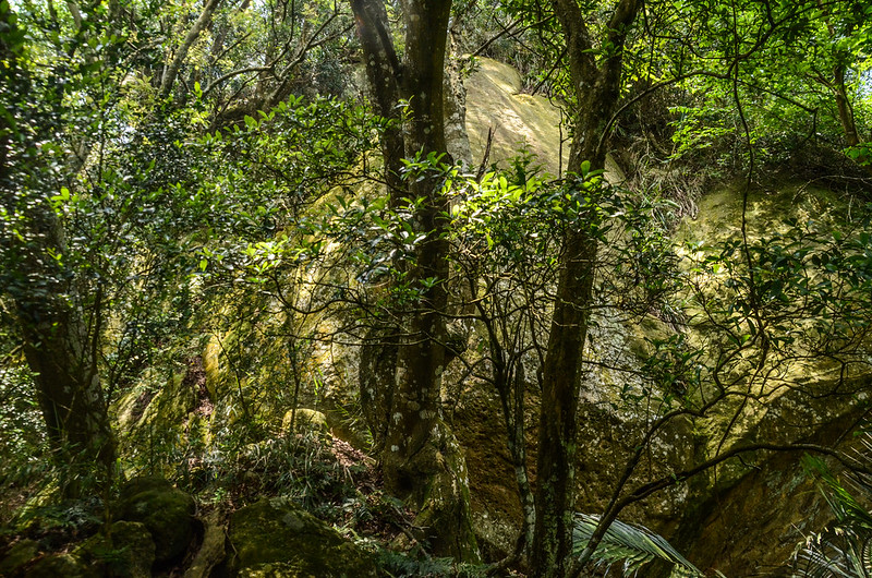 山羊凸山山頂下巨岩地形 (1)