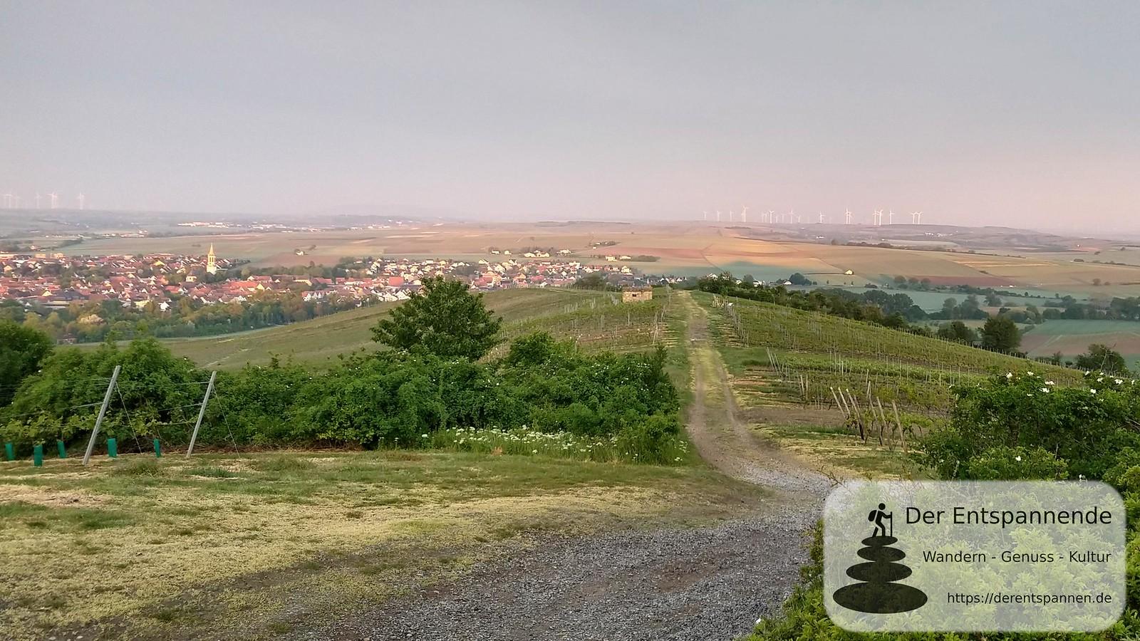 Gau-Odernheim (Abstieg vom Petersberg, Rheinhessen)