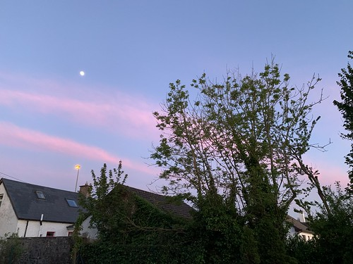 Pink Chemtrails At Sunset