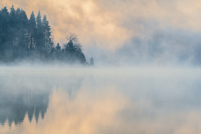Urbina fog