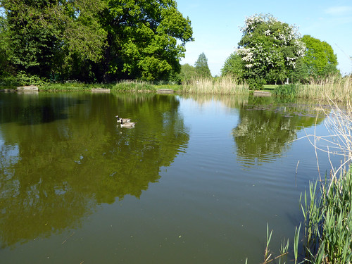 Pathway to Little Apley Pool