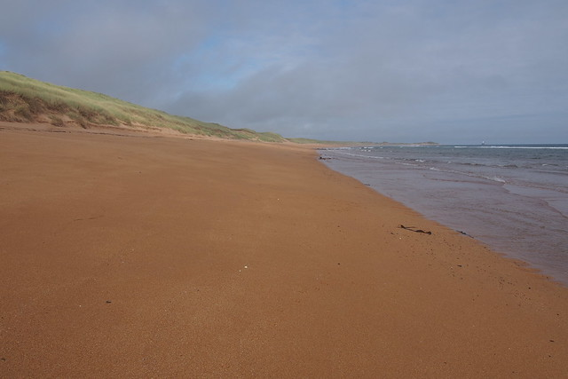 The coast north of St Fergus