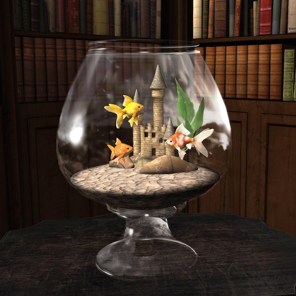 HEXtraordinary – Goldfish Display @Gacha Garden