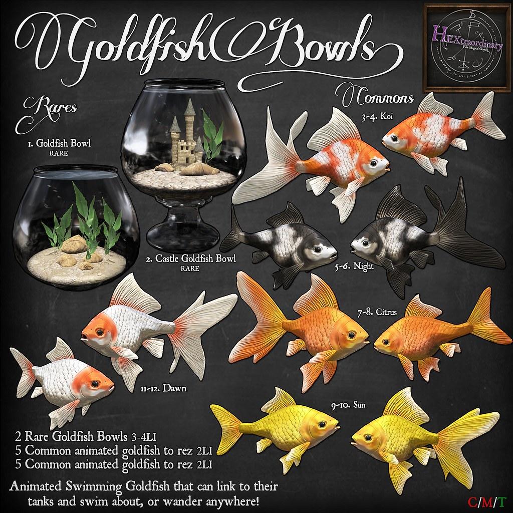 HEXtraordinary - Goldfish Bowl @Gacha Garden