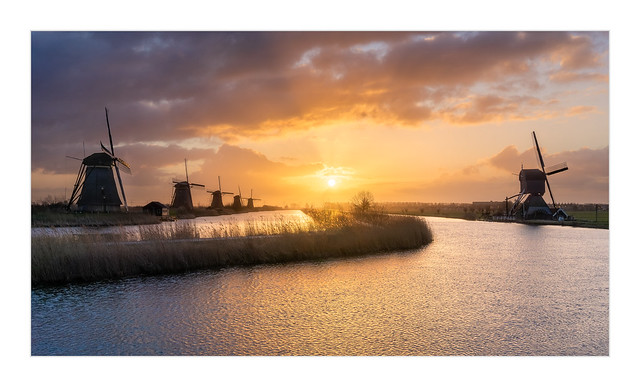 Morning Sun at Kinderdijk
