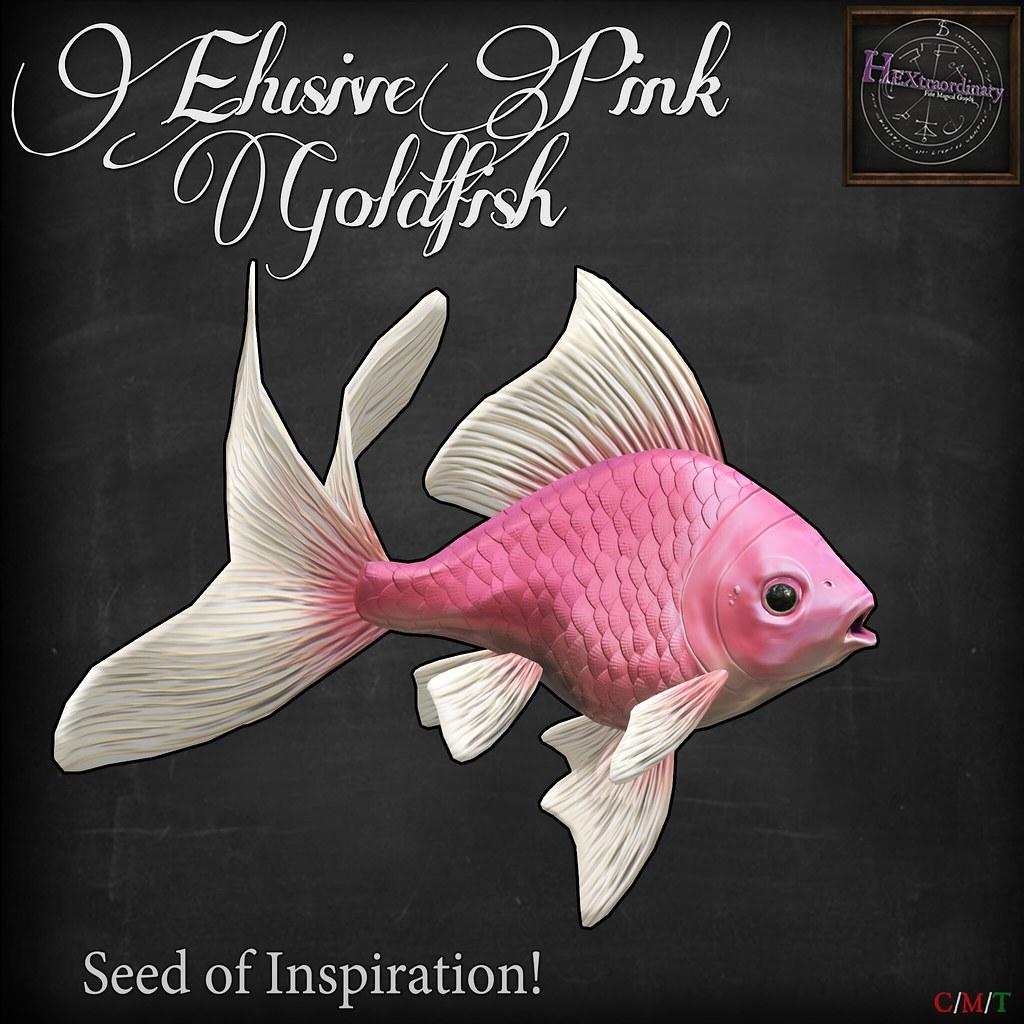HEXtraordinary - Goldfish Seed of Inspiration @Gacha Garden