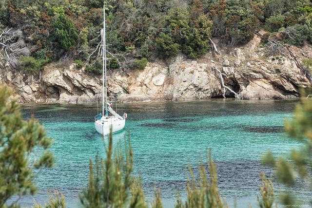 Les Criques de l'Île de Porquerolles - Var - Côte d'Azur France 3D0A8215