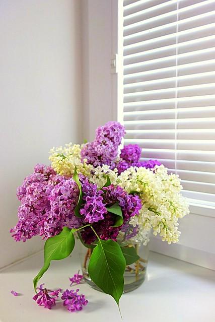 bouquet for pleasure