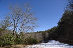 Little Glade Mill Pond 6692