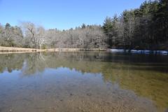 Little Glade Mill Pond 6698