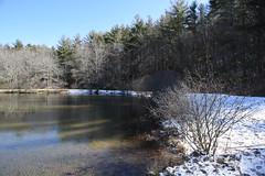 Little Glade Mill Pond 6702
