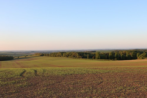 barkway hertfordshire view countryside fields landscape evening england unitedkingdom uk canoneos750d