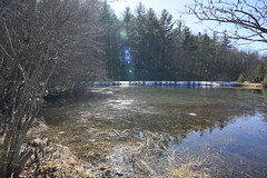 Little Glade Mill Pond 6714