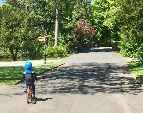 Boy on a bike in a park