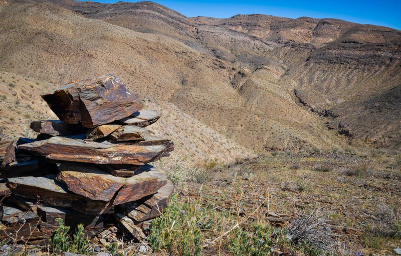 El Paso Mountains Wilderness