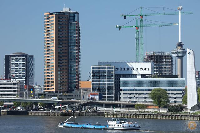 De Zalmhaven