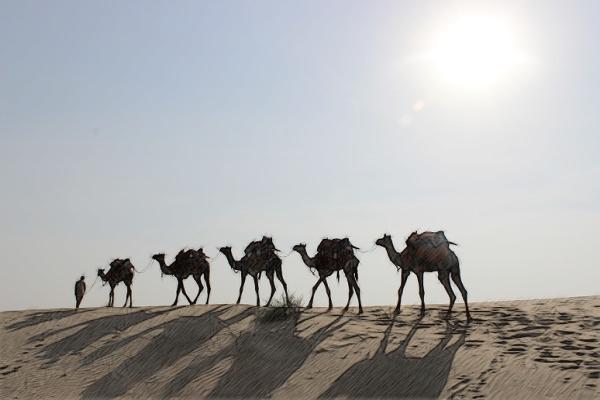 Jaisalmer_DesiertoThar