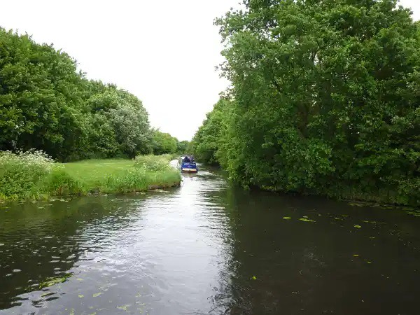 Hollybank Basin