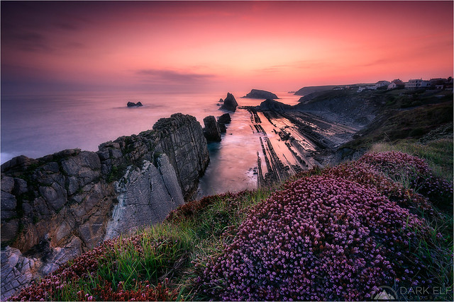 Magic of Dawn