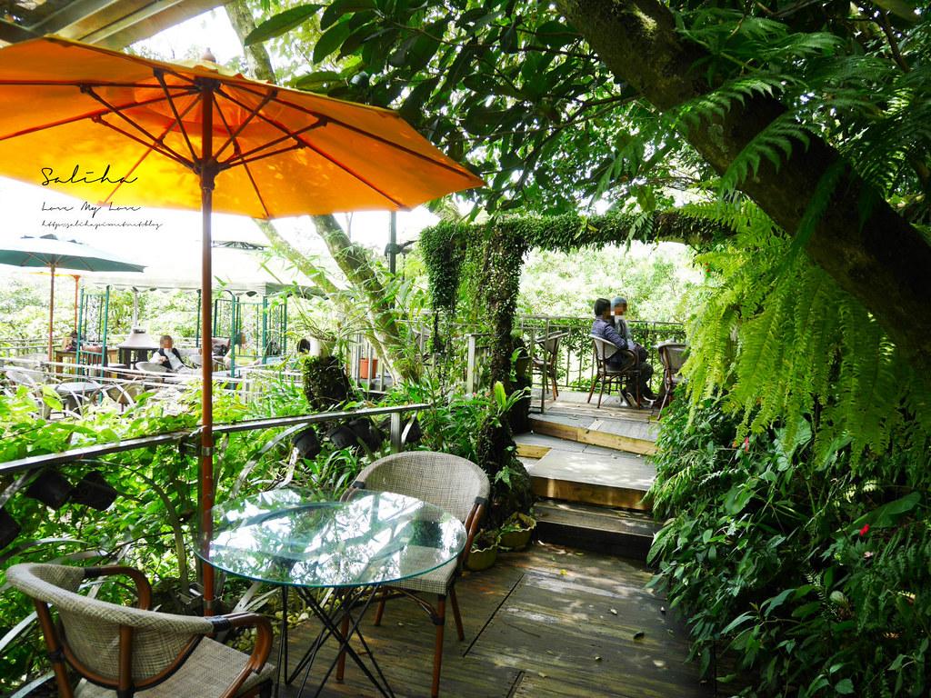 新店銀河洞景觀戶外餐廳推薦青立方 咖啡廳花草植物系好美好拍ig網美景點分享 (2)