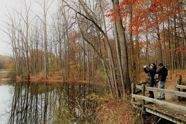 Viewing Nature Through An iPhone