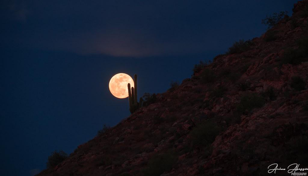 Supermoon Arizona Desert